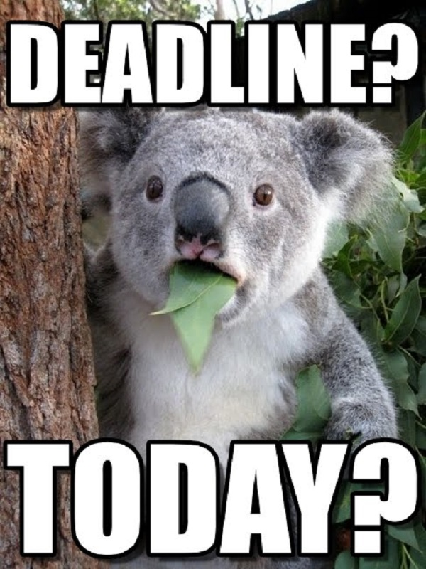 Funniest Memes Today : Every procrastinator will totally relate to these funny