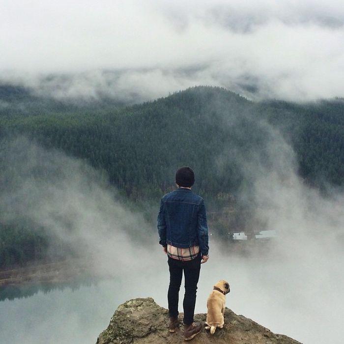 pug-norm-adventures-jeremy-veach-2-5821a1aba84b5__700