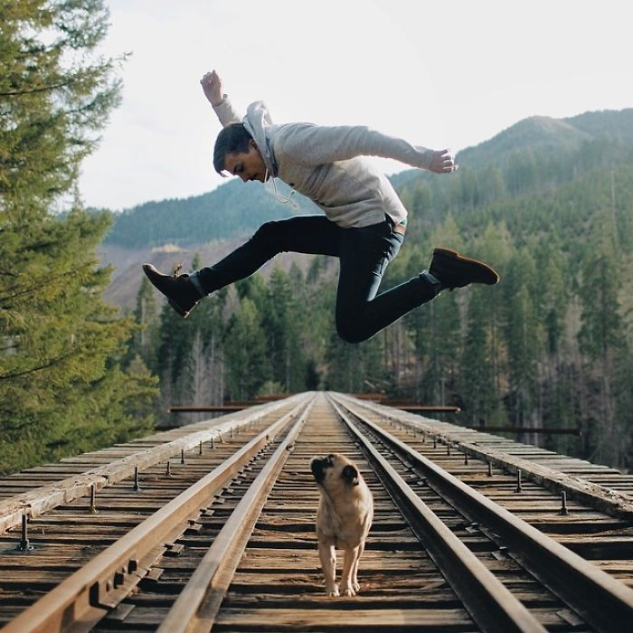 pug-norm-adventures-jeremy-veach-90-5821a2974d124__700