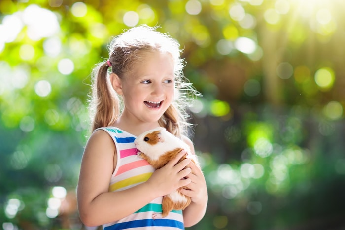 Happy Kid Holding Guinea Pig