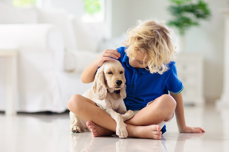 Teaching your kids proper pet care