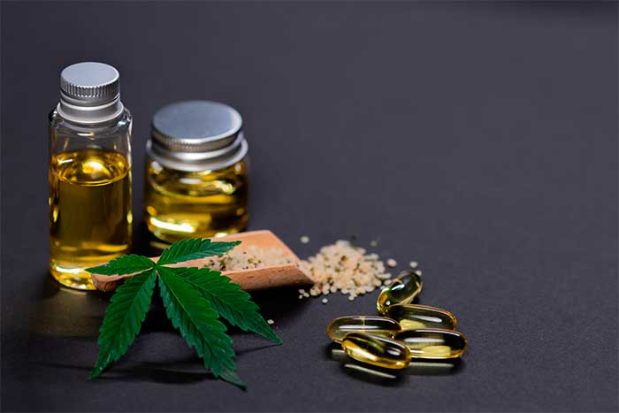 What You Need to Know About CBD Oil for Dogs